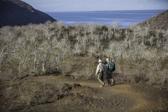 Tourists Hiking Near Darwin Lake at Tagus Cove-Jad Davenport-Photographic Print