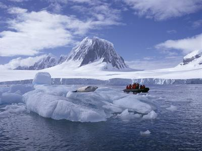 Tourists in Rigid Inflatable Boat Approach a Seal Lying on the Ice, Antarctica-Geoff Renner-Photographic Print