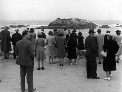 Tourists Visiting Coastal Areas Where Seals Congregate on Monterey Peninsula-Peter Stackpole-Photographic Print