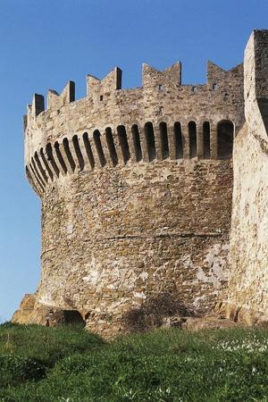 https://imgc.artprintimages.com/img/print/tower-of-fortress-14th-15th-century-populonia-tuscany-italy_u-l-pooasp0.jpg?p=0