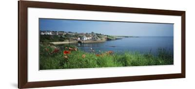 Town at the Waterfront, Crail, Fife, Scotland--Framed Photographic Print