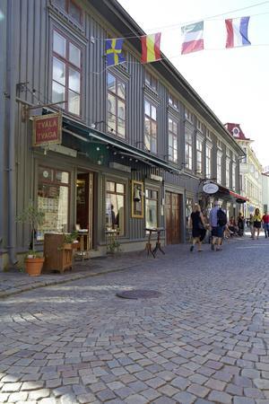 https://imgc.artprintimages.com/img/print/town-view-gothenburg-province-of-vaestra-goetalands-laen-sweden_u-l-q1exuut0.jpg?p=0