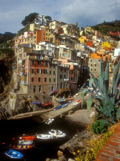 Town View, Rio Maggiore, Cinque Terre, Italy-Alison Jones-Photographic Print