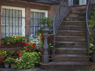 Townhouse Steps-J.D. Mcfarlan-Photographic Print