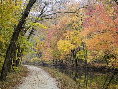 Towpath Along the Chesapeake and Ohio Canal One Autumn Day-Skip Brown-Photographic Print