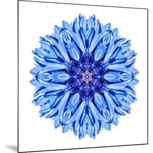 Blue Cornflower Mandala Flower Kaleidoscope by tr3gi