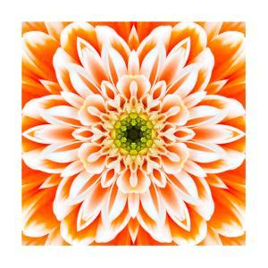 Orange Concentric Flower Center: Mandala Kaleidoscopic Design by tr3gi