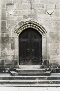 Brown Door by Tracey Telik