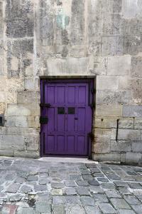 Cloony Purple 2 by Tracey Telik