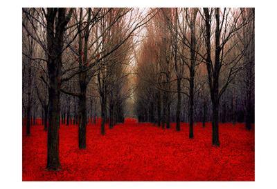Fairy Tale Autumn