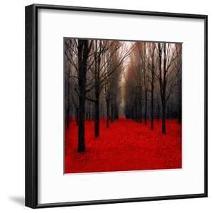 Fiery Autumn by Tracey Telik