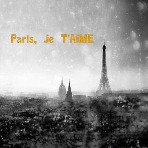 Paris Je Aime Enlight by Tracey Telik