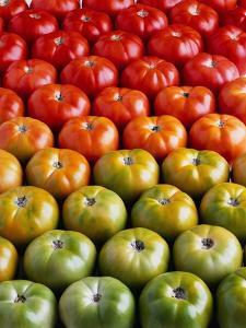 Red and Green Tomatoes by Tracey Thompson