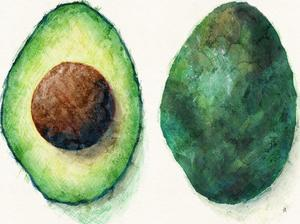 Avocado by Tracie Andrews