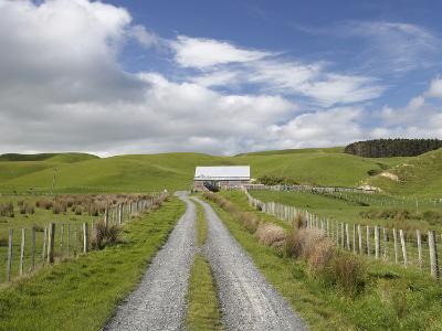 Track and Farm Building, Near Lake Ferry, Wairarapa, North Island, New Zealand-David Wall-Photographic Print