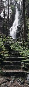 Track to a Waterfall in a Forest, Burgbach Waterfall, Black Forest, Baden-Wurttemberg, Germany