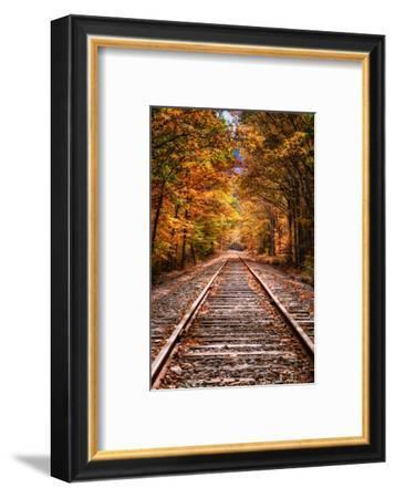 Tracks Into Fall, White Mountains New Hampshire, New England in Autumn-Vincent James-Framed Photographic Print