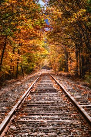 https://imgc.artprintimages.com/img/print/tracks-into-fall-white-mountains-new-hampshire-new-england-in-autumn_u-l-q1ge74k0.jpg?p=0