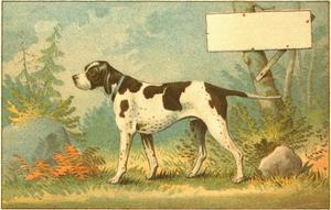 Trade Card of a Hound Dog in the Forest