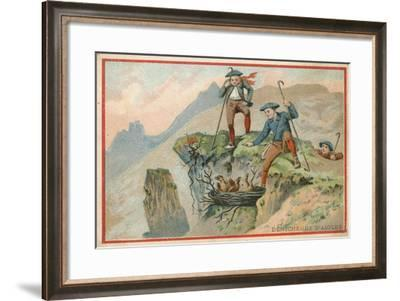 Trade Card with an Image of Men Stealing Eagle Eggs--Framed Giclee Print