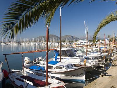Traditional Boats Moored in the Harbour, Port D'Alcudia, Mallorca, Balearic Islands, Spain, Mediter-Ruth Tomlinson-Photographic Print