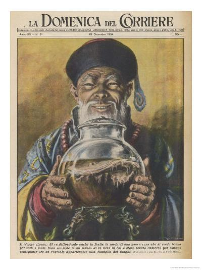 """Traditional """"Cure-All"""" from China, Black Tea-Walter Molini-Giclee Print"""