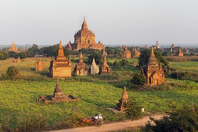Traditional Horse and Cart Passing the Pagodas in Bagan (Pagan), Myanmar (Burma), Asia-Jordan Banks-Photographic Print
