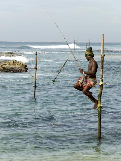 Traditional Stilt Fisherman, Koggala, Near Weligama, South Coast of Sri Lanka, Asia--Photographic Print