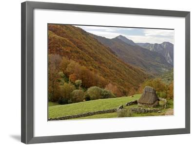 Traditional Thatched Hut, Brana De Fuexu, Valle Del Lago, Somiedo Np. Asturias, Spain-Juan Manuel Borrero-Framed Photographic Print