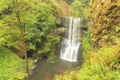 https://imgc.artprintimages.com/img/print/trail-of-ten-falls-silver-falls-state-park-near-silverton-oregon_u-l-q1gbop00.jpg?p=0