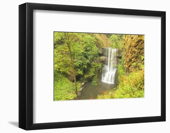 Trail of Ten Falls, Silver Falls State Park, near Silverton, Oregon-Stuart Westmorland-Framed Photographic Print