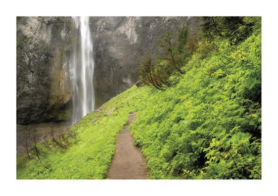 Trail To Comet Falls-Donald Paulson-Giclee Print