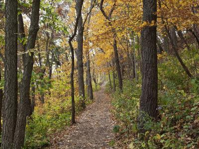 Trail to Great Bear and Little Bear Mound, Effigy Mounds National Monument, Iowa, USA-Jamie & Judy Wild-Photographic Print