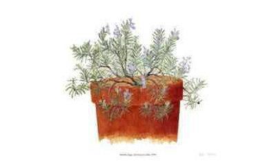 https://imgc.artprintimages.com/img/print/trailing-lavender_u-l-erynp0.jpg?p=0