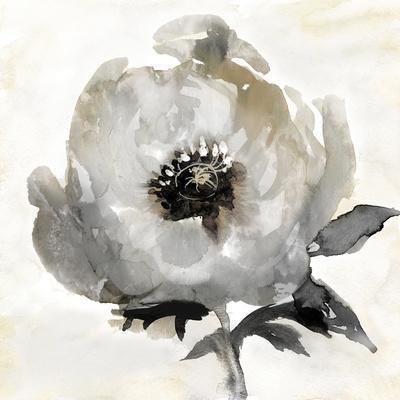 https://imgc.artprintimages.com/img/print/tranquil-floral-ii_u-l-f8nhlq0.jpg?p=0