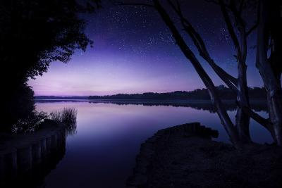 Tranquil Lake and Trees Against Starry Sky, Moscow, Russia--Photographic Print