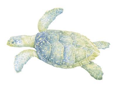 Tranquil Sea Turtle II-Megan Meagher-Art Print