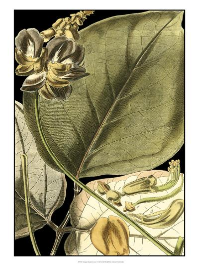 Tranquil Tropical Leaves I-Vision Studio-Art Print