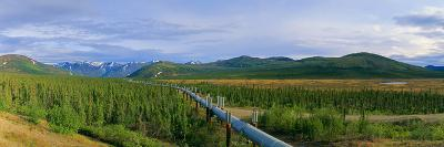 Trans Alaska Oil Pipeline Just South of the Brooks Range-Paul Andrew Lawrence-Photographic Print
