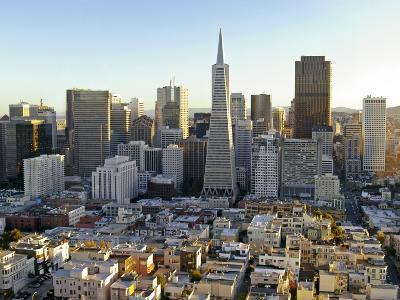 Transamerica Pyramid Building and Downtown from Top of Coit Tower-Emily Riddell-Photographic Print