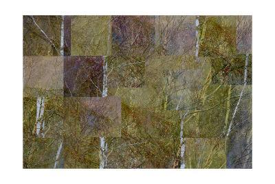 Transitions In Gold-Doug Chinnery-Photographic Print
