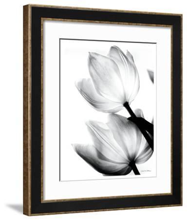 Translucent Tulips II-Debra Van Swearingen-Framed Art Print