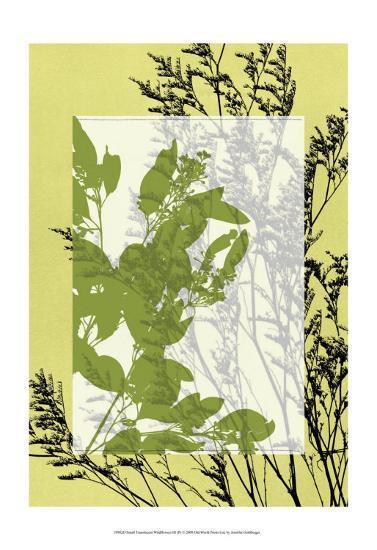 Translucent Wildflowers III-Jennifer Goldberger-Art Print