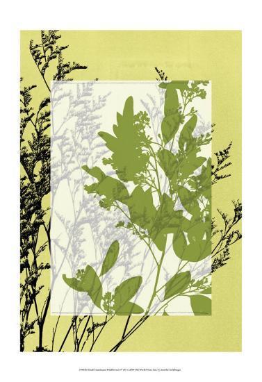 Translucent Wildflowers IV-Jennifer Goldberger-Art Print