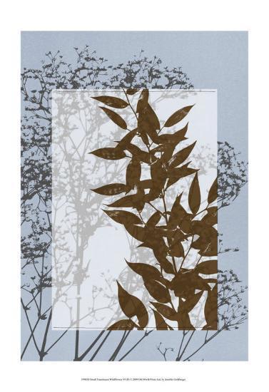 Translucent Wildflowers VI-Jennifer Goldberger-Art Print