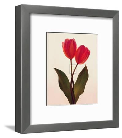 Transparent Beauty I-Katja Marzahn-Framed Art Print