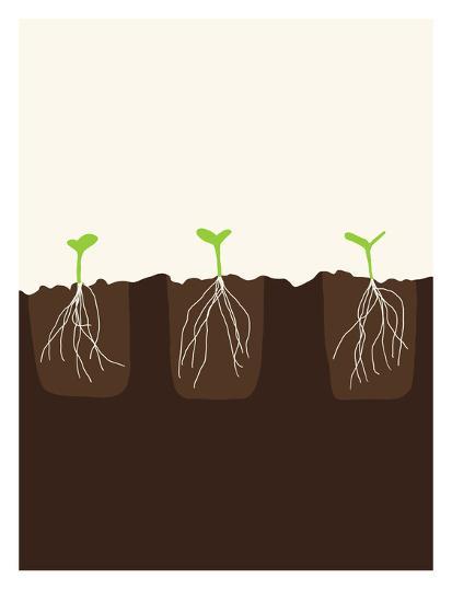 Transplants-Jorey Hurley-Art Print