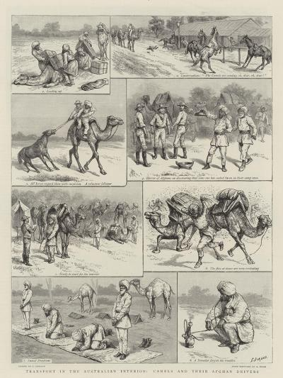 Transport in the Australian Interior, Camels and their Afghan Drivers-Godefroy Durand-Giclee Print