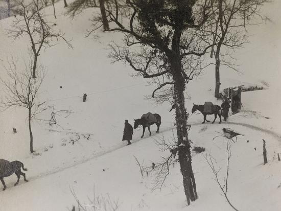 Transport of Supplies During the First World War-Luigi Verdi-Photographic Print