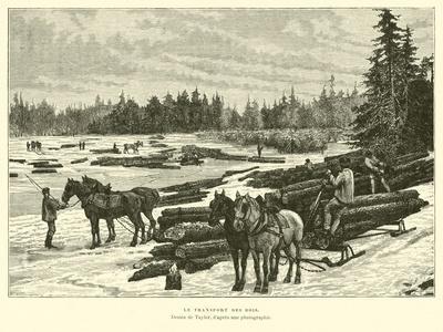 https://imgc.artprintimages.com/img/print/transporting-timber_u-l-ppo8dt0.jpg?p=0